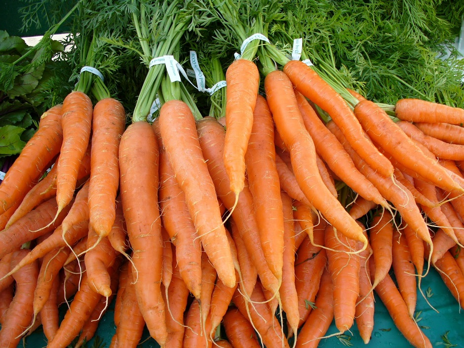 apakah-wortel-menyembuhkan-buta-warna