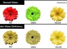 buta-warna-parsial