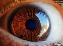 apa_itu_glaukoma